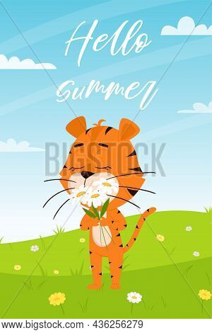 Cute Cartoon Tiger Sniffs Daisies On The Background Of Summer Landscape With A Field, Flowers, Dande
