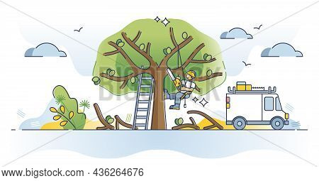 Arborist As Professional Tree Cutting Or Pruning Occupation Outline Concept. Forest Trimming Service