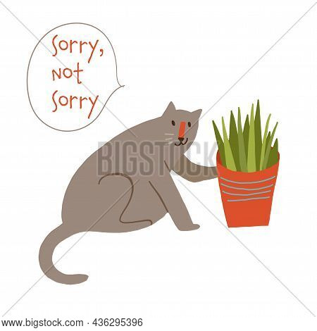 Cute Naughty Cat Knocking Off A Plant Pot Sorry Not Sorry