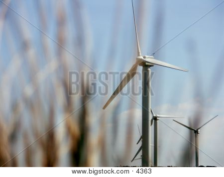Windmill Depth Of Field