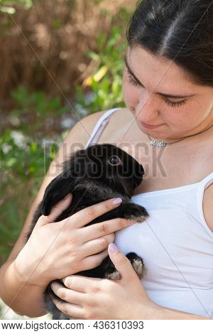 Young Attractive Woman Holding A Black Rabbit Pet Animal. Domestic Animal Caring