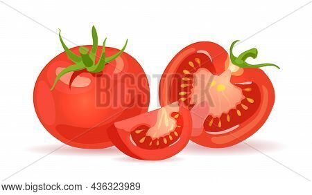 Fresh Red Tomatoes. Vegetables. Half A Tomato, A Slice And A Whole Tomato. Vector Realistic Illustra
