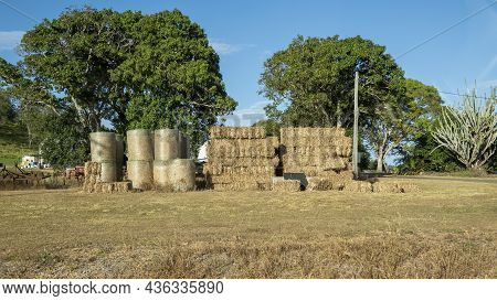 Rolled And Stacked Hay Bales For Animal Feed Stacked On A Country Property