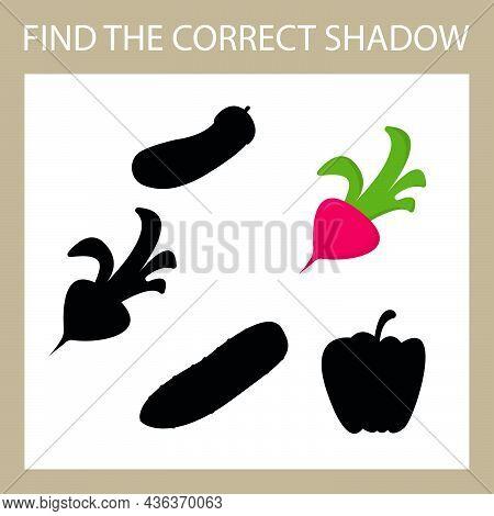 Find A Shadow Radish Steam Room. Match Vegetable With Correct Shadow Preschool Worksheet, Kids Activ
