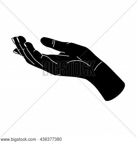 Hands Gesture, Human Body Part. Woman Or Man Arm
