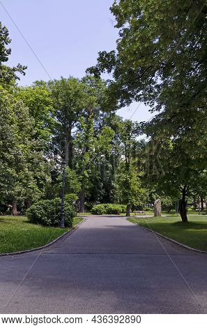View Of Part Of The Alley In Borisova Gradina, Park With Green Trees, Bushes And Fresh Grass, Sofia,