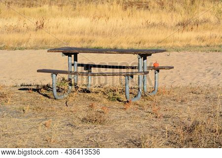 Small Halloween Pumpkin Decoration Left On Wooden Picnic Table At Park With Dried Yellow Autumn Gras