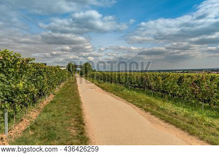 View From The Floersheimer Viewpoint On Frankfurt And The Rhein Main Plain, Germany