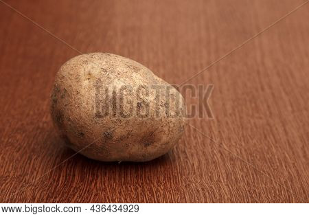 One Raw Potatoe On The Table Closeup. Indoor Daylight