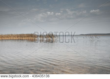 Cloudy Gray Blue Sky And Calm Water Of Lake With Autumn Grass In It. Peaceful Landscape With Matural