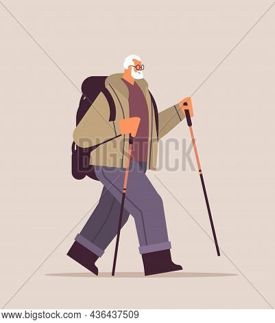 Senior Man Hiker Traveling With Backpack And Sticks For Walk Nordic Walking Active Old Age Concept