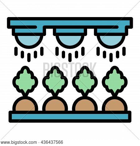Farm Carrot Irrigation Icon. Outline Farm Carrot Irrigation Vector Icon Color Flat Isolated