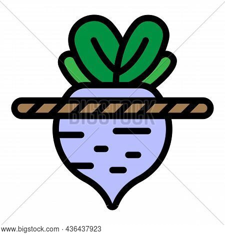 Soil Beet Icon. Outline Soil Beet Vector Icon Color Flat Isolated