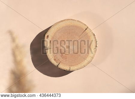 Woodcut Lying On Trendy Beige Background With Naturally Blurred Pampas Grass. A Wooden Platform For