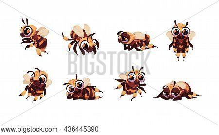 Cartoon Bee. Bumblebee Smiley Mascot Character Standing And Lying. Funny Flying Insect Buzzing. Happ