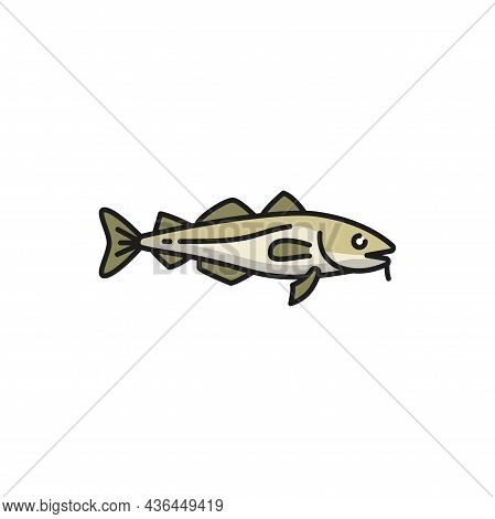 Anchovy Small Forage Fish Isolated Sardine Flat Cartoon I Icon. Vector Portugal Fishing Sport Mascot