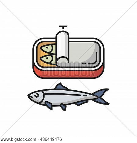 Sardines In Tin Can Isolated Fish, Portugal Food Flat Cartoon Icon. Vector Portuguese National Food,