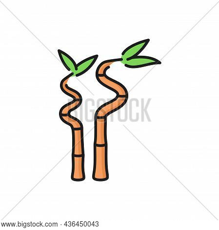 Bamboo Stems And Leaves Isolated Flat Line Icon. Vector Decorative Bamboo Branches, Asian Tropical R
