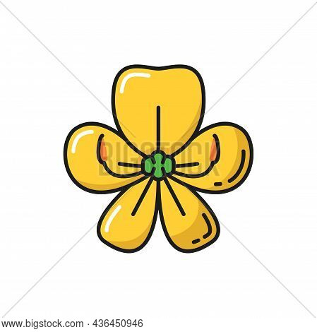 Golden Shower Flower Cassia Fistula Isolated Yellow Color Line Icon. Vector Thai Blossom, Gold- Show