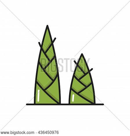 Sprouts Of Green Bamboo Plant Isolated Color Line Icon. Vector Thailand Or Thai Cuisine Dishes Ingre