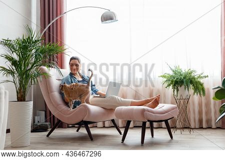 Beautiful Young Woman Petting Cat While Working Using Laptopat Home In Comfortable Chair. Freelancer