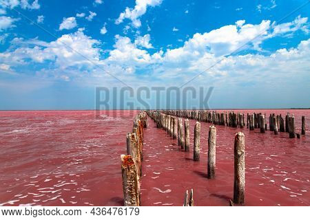Exotic Pink Salt Lake And Blue Sky With Clouds. High Quality Photo