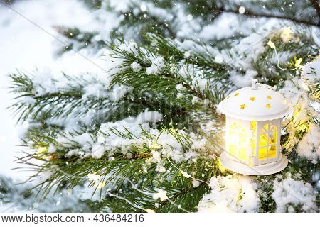 Christmas Lantern With Windows On Branch Of Natural Spruce In Snow. New Year Outdoor. Snowfall, Garl