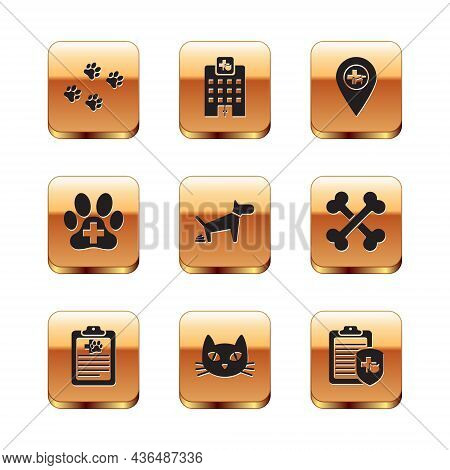 Set Paw Print, Clinical Record Pet, Cat, Dog Pooping, Veterinary Clinic And Location Veterinary Icon