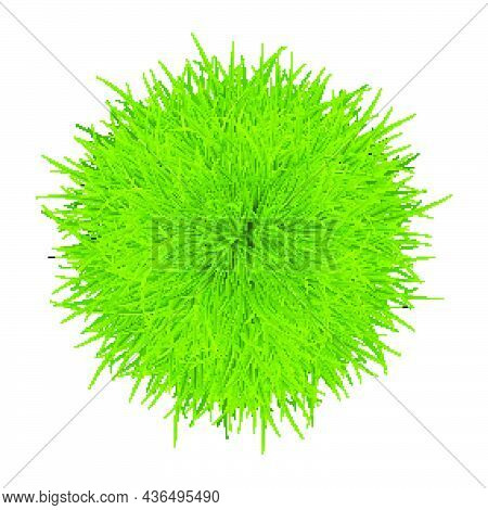 Green Grass Sphere As A Natural Symbol Of Ecology And Clean Energy Icon. Eco-friendly Styled Element