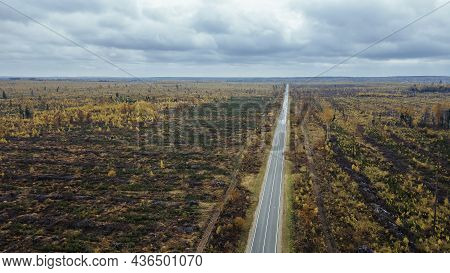 Aerial Top Down View Of Countryside Asphalt Road At Autumn. Autumn Colors. Nature. Paved Road Betwee