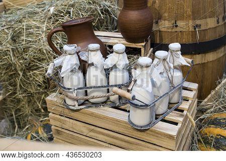 Milk - Decoration On Farm. Agriculture, Farming. Farmer Milk In Bottles. Natural Milk, Organic Milk.