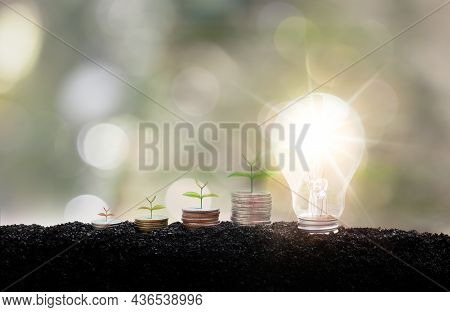 A Tree Growing Up On Coin And Lightbulb On A Blurred Green Natural Background. Alternative Energy, R