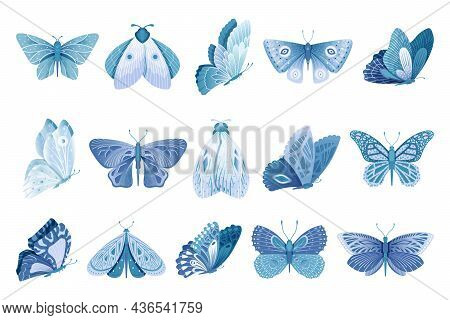Flying Butterfly. Isolated Blue Butterflies, Magic Moth. Abstract Artistic Insects, Bright Spring Su