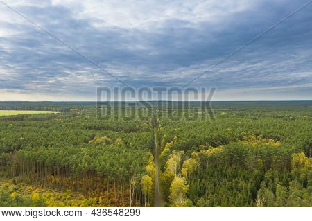 Vast, Flat Terrain. Bory Dolnoslaskie. A Green Pine Forest Can Be Seen To The Edge Of The Horizon. N
