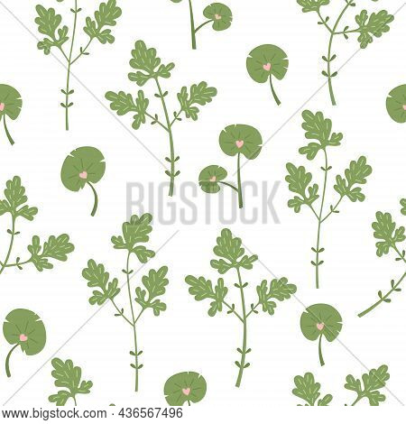 Botanical Vector Seamless Pattern With Plants And Flowers