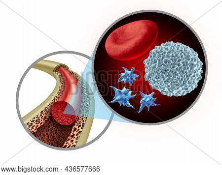 Bone Marrow Blood Cells As Platelets And White Blood Cell Concept Inside A Healthy Anatomy With Stro