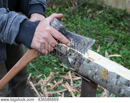 Clearing The Bark Of An Ash Tree By Hand With An Ax, Peeling Off Fresh Bark From A Thin Log With The
