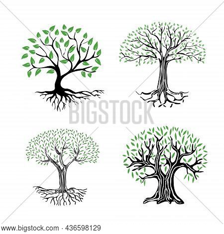 A Set Of Illustrations Of A Tree With Roots And Green Foliage. Abstract Tree Icon On A White Backgro