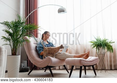 Beautiful Young Woman Working On Laptop At Home In Comfortable Chair With Cat. Freelancer Woman Work