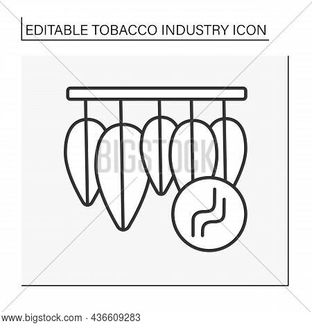 Drying Tobacco Line Icon. Harvested Leaves Dry For Cigarettes. Tobacco Industry Concept. Isolated Ve