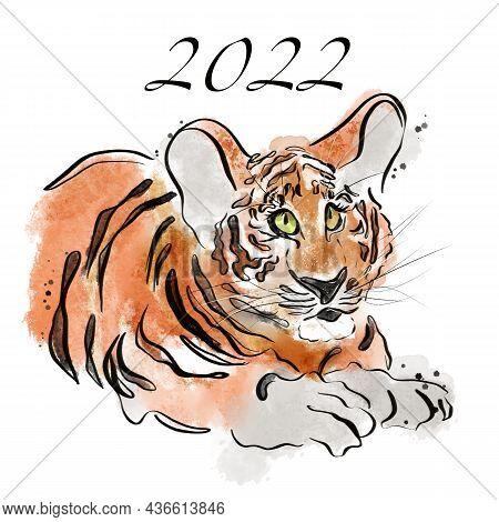 Tiger Cub Is A Symbol Of The New Year 2022 Isolated On White