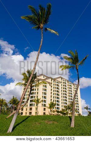 Time Share On Oahu Hawaii