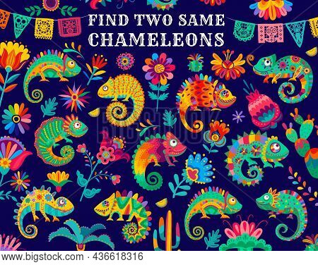 Find Two Same Mexican Chameleon Lizards, Kids Game Riddle, Vector. Find Similar Objects, Puzzle Or T