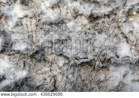 Old Weathered Mineral Wool As Insulation On The Wall Of A Village Barn. Texture And Pattern Of Natur