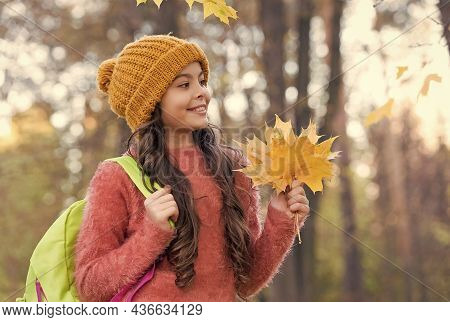 So Beautiful. Beauty Of Fall Nature. Happy Kid Wear Knitted Sweater And Hat. Teen Girl Gathering Fal