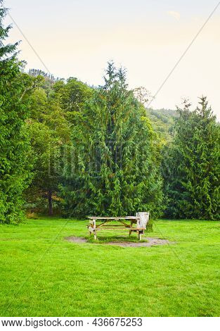 Picnic Table On A Green Meadow. Amongst Greenery.