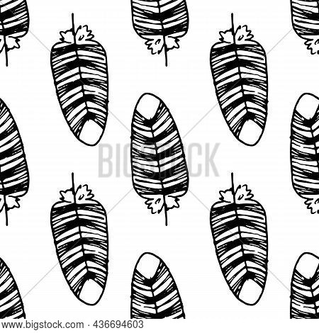 Vector Pattern Of A Bird's Feather. Seamless Pattern Of A Hand-drawn Bird's Feather In The Style Of