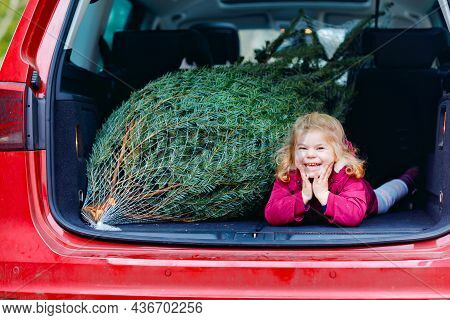 Adorable Little Toddler Girl With Christmas Tree Inside Of Family Car. Happy Healthy Baby Child In W