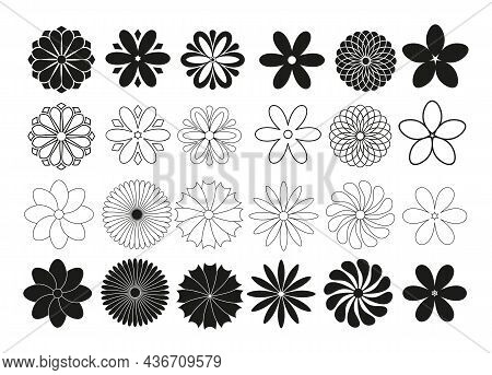 Set Of Radial Flowers, Thin Black Lines On A White Background, Isolated, Collection Of Vector Design