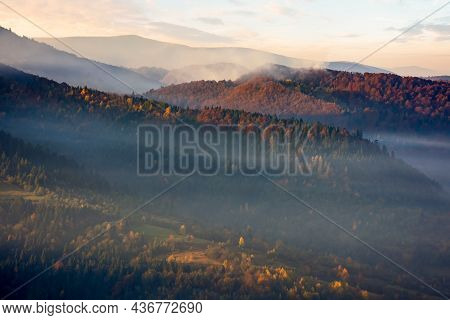 Mountain Landscape On A Foggy Morning. Scenic Nature Background With Colorful Forest In Autumn